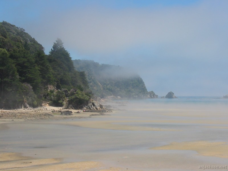 03987_misty_beach_ii-1391.jpg